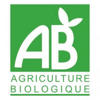 new-logo-AB-.jpeg